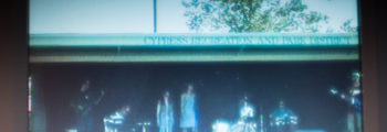 Cypress Festival